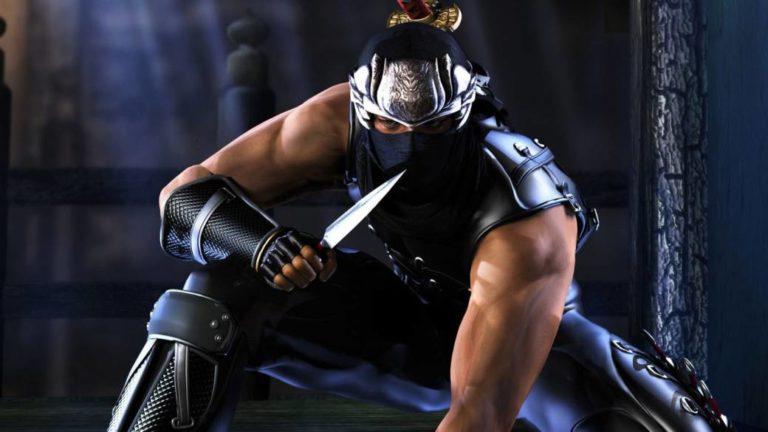Theme Ninja wants to make a new Ninja Gaiden; he knows it's a fan's wish