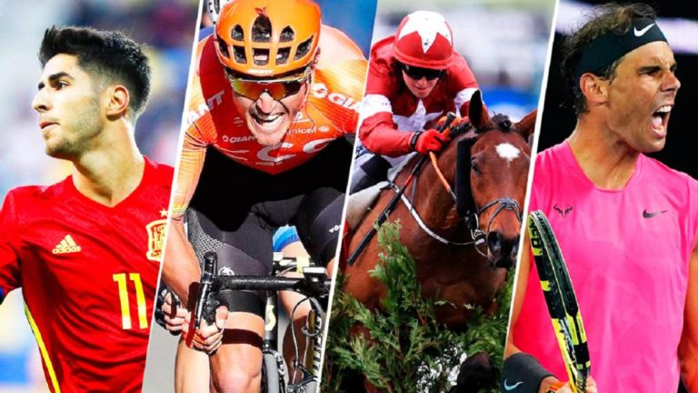 The rise of virtual sports: soccer, cycling, tennis, basketball, horse riding ...