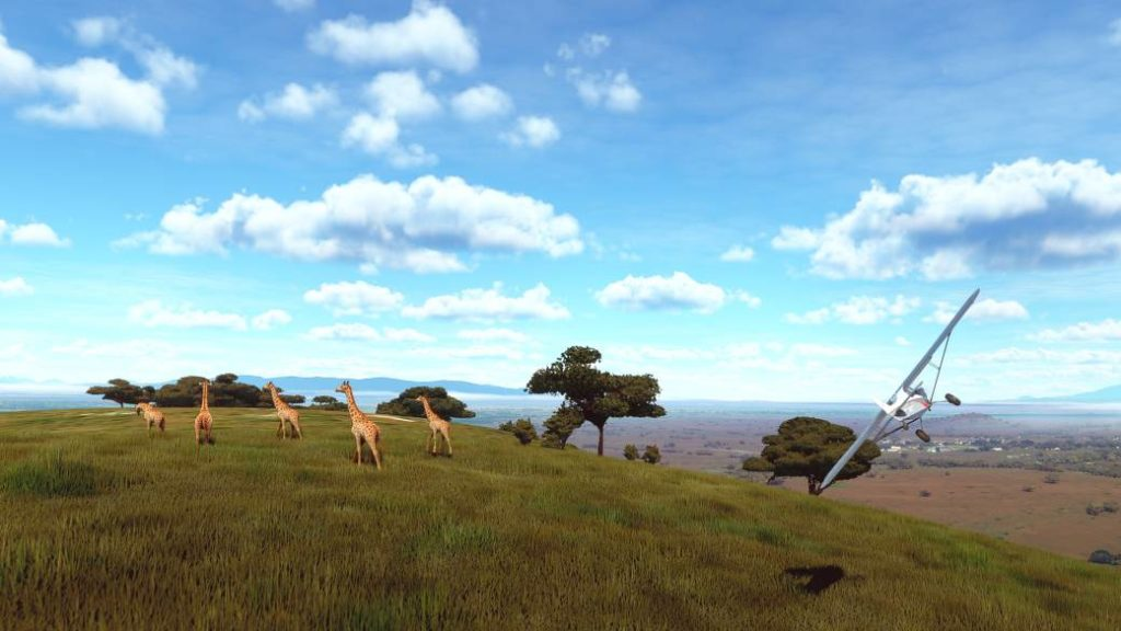 Microsoft Flight Simulator – A user captures wildlife in motion