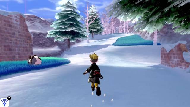 Pokémon Sword / Shield - Crown Snows